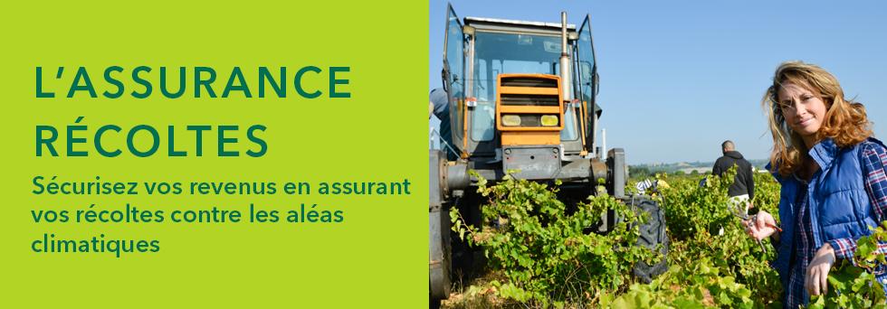 #L'ASSURANCE RÉCOLTES Sécurisez vos revenus en assurant vos récoltes contre les aléas climatiques.